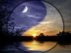 yin-et-yang.jpg